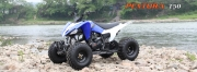 АТV Mикилон 150cc автоматик-новият модел Pentora